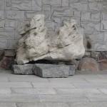 znaleziony osobliwy kamień